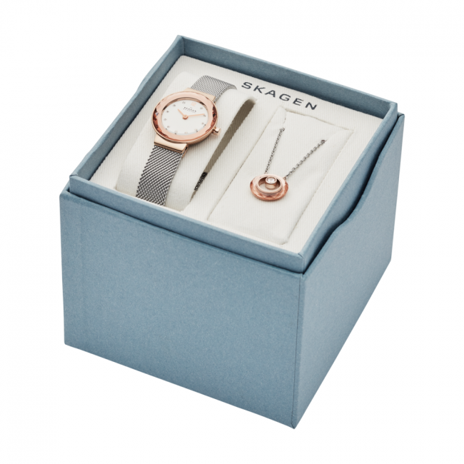 Hodinky SKAGEN - Leonora SKW1112 Silver/Rose Gold